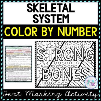 Skeletal system worksheet pic